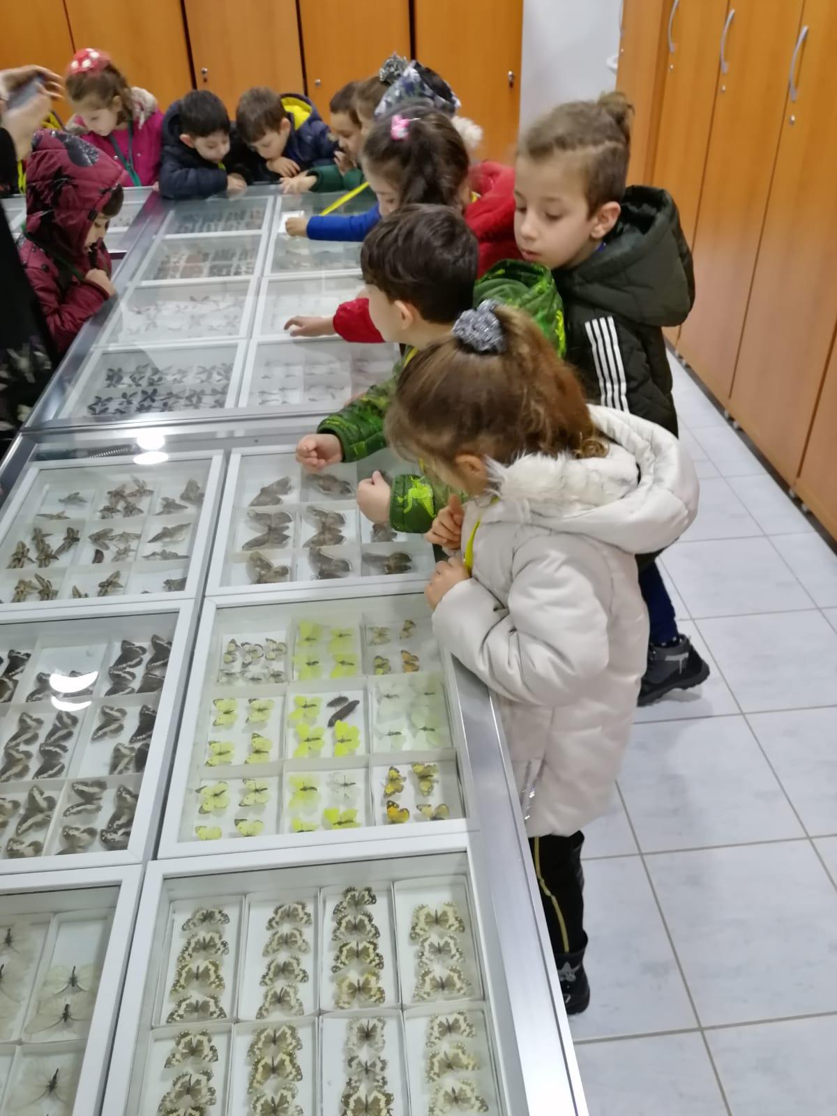 Müze Ziyareti